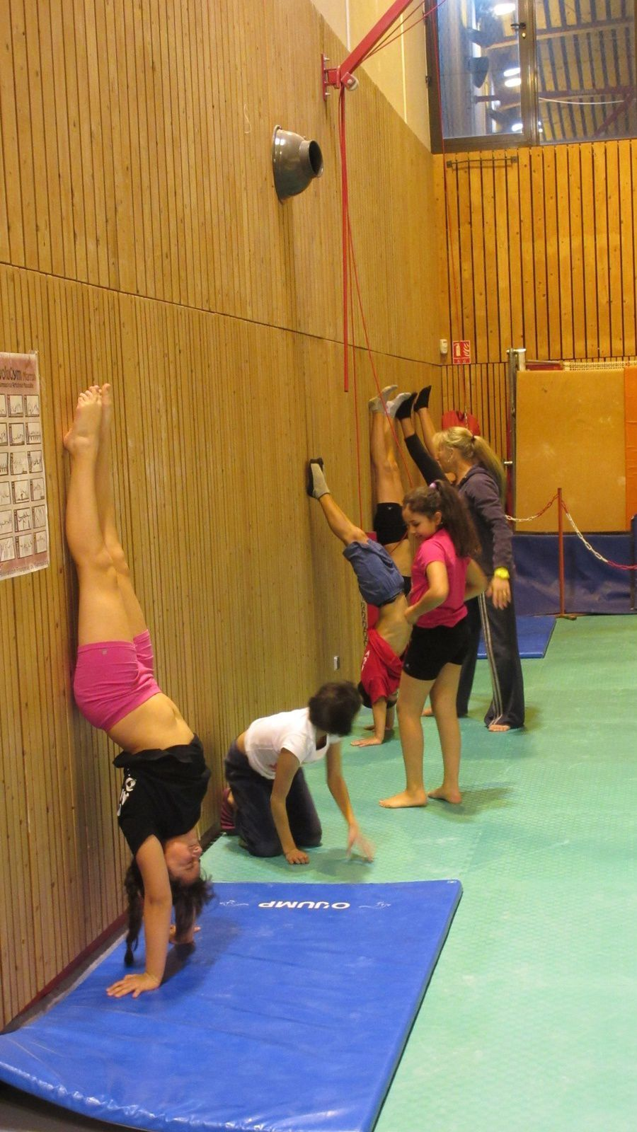 Les effectifs du CMOV gymnastique, danse et trampoline sont à la hausse