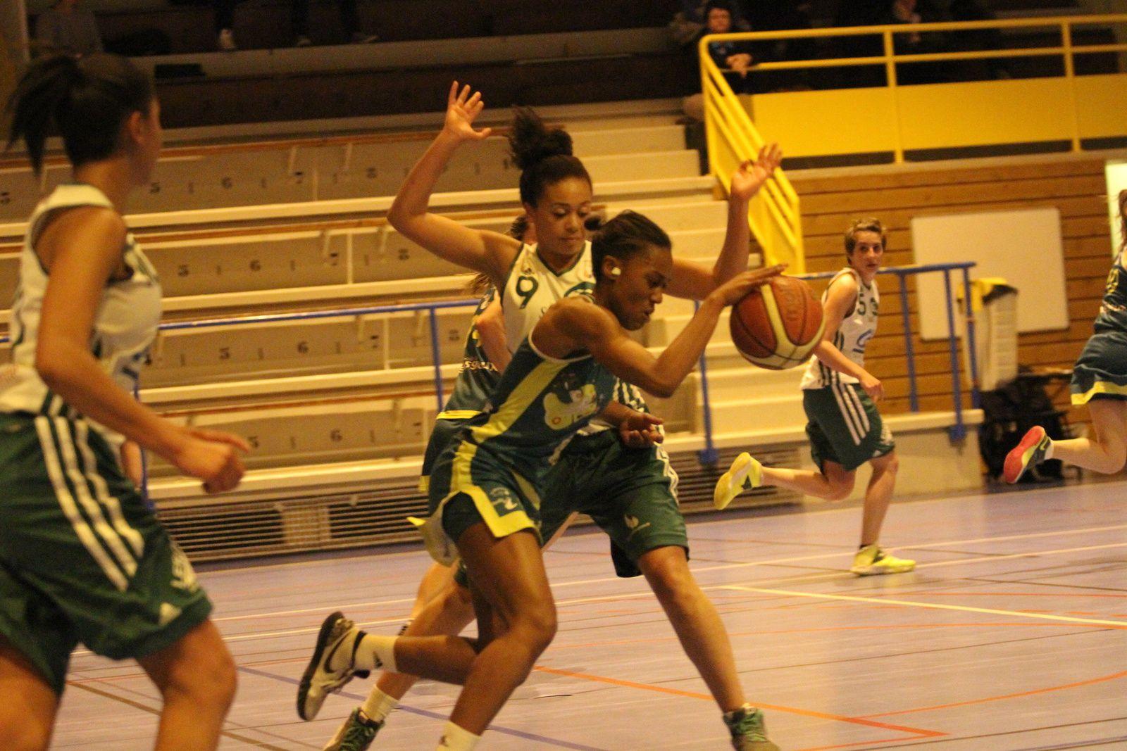 Les féminines de l'ALVP basket font leur retour en N3, une saison après l'avoir quitté