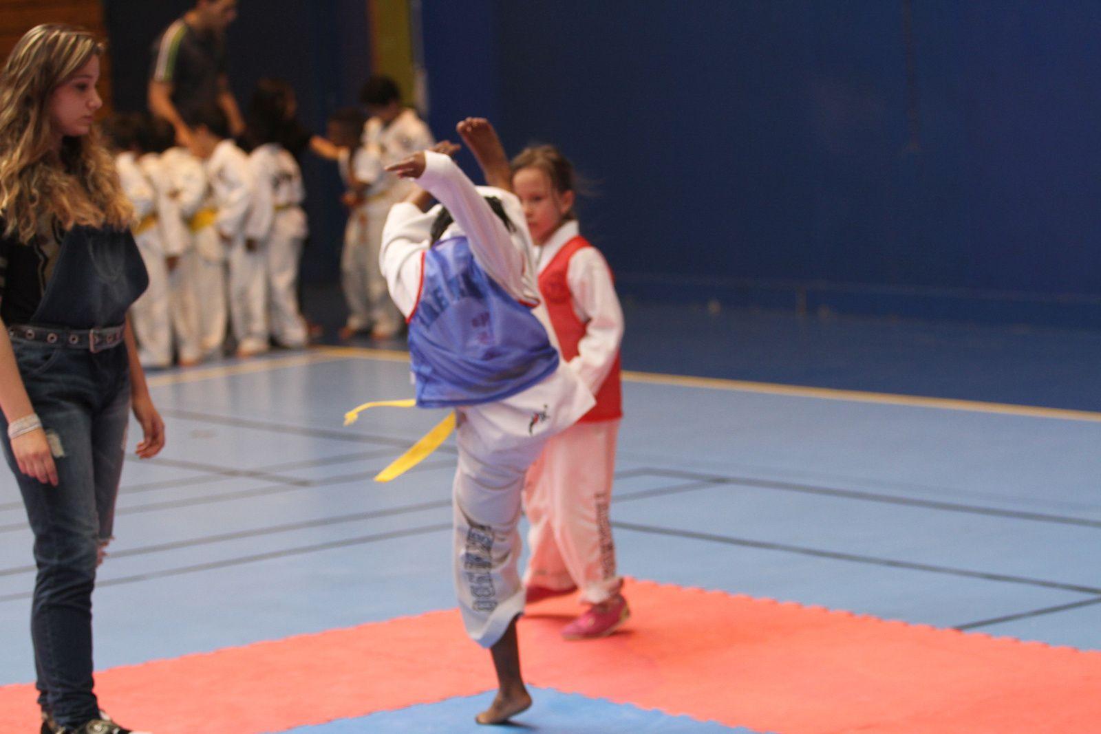 Le Taekwondo Vénissieux a parfaitement réussi l'organisation de son second interclubs de la saison