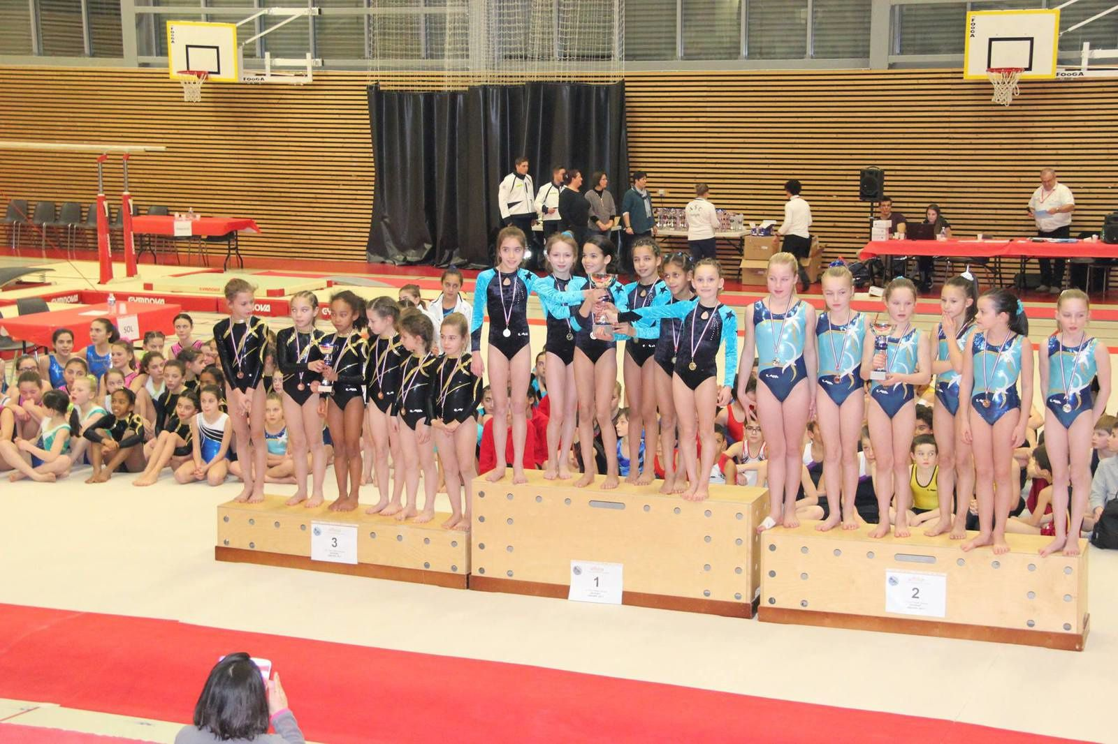 Les jeunes gymnastes vénissians ont performé ce week-end
