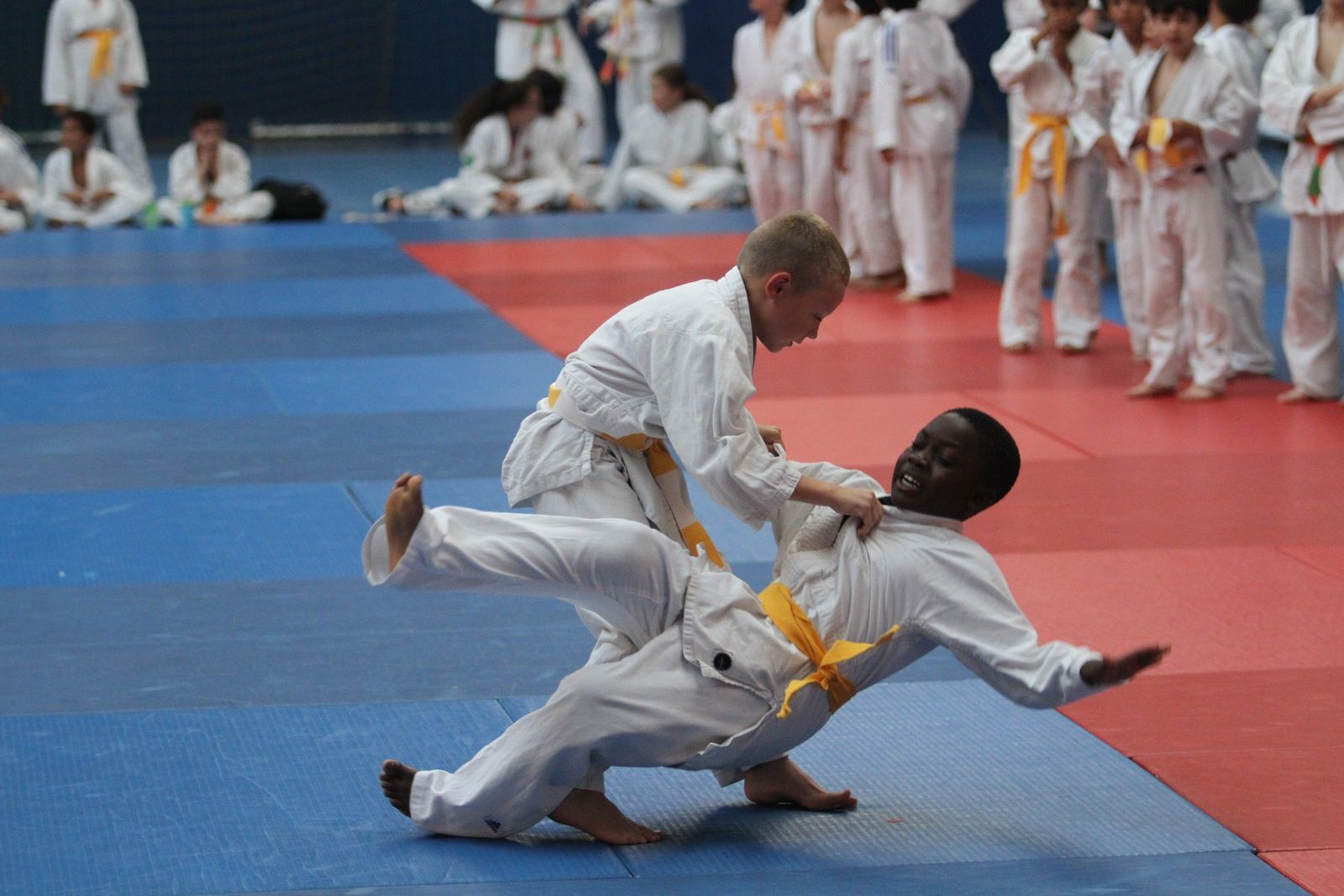 Le judo version Parilly a fini la saison en beauté
