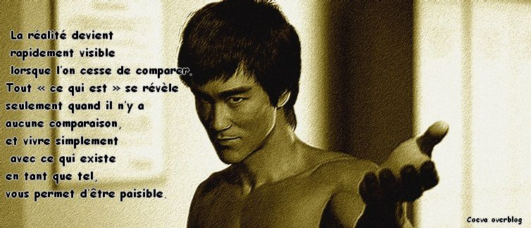Citations de Bruce lee