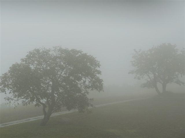 Après la pluie, le brouillard.