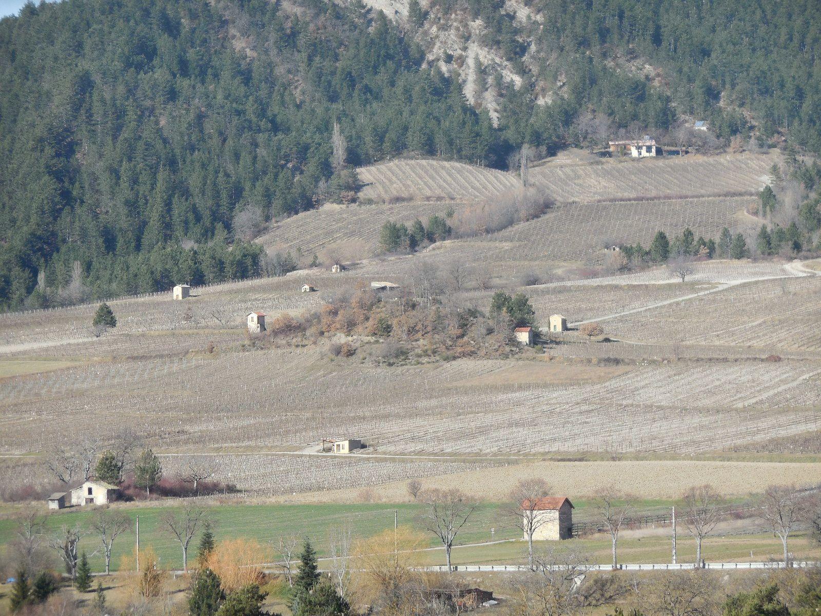 Cabanons de vigne à Chatillon en Diois