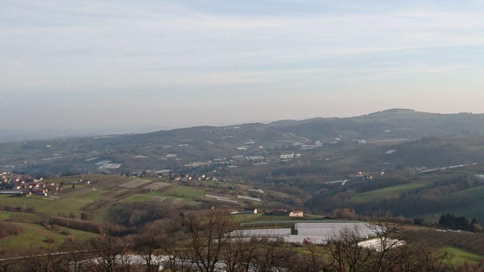 Les collines autour de Thurins, capitale du fruit, sont recouvertes de serres
