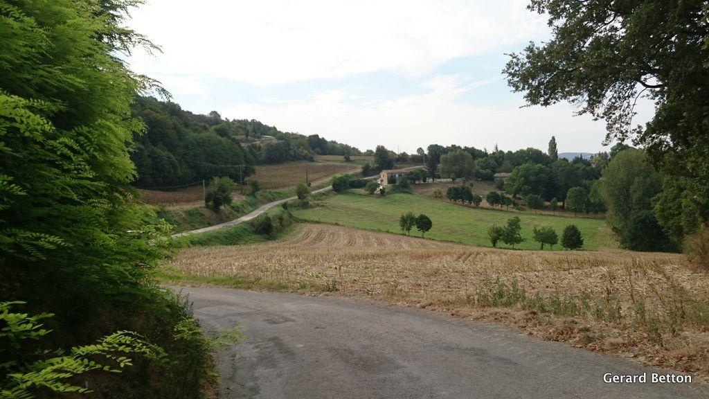 Route sinueuse et vallonnée sur le plateau (route de Vaunaveys)