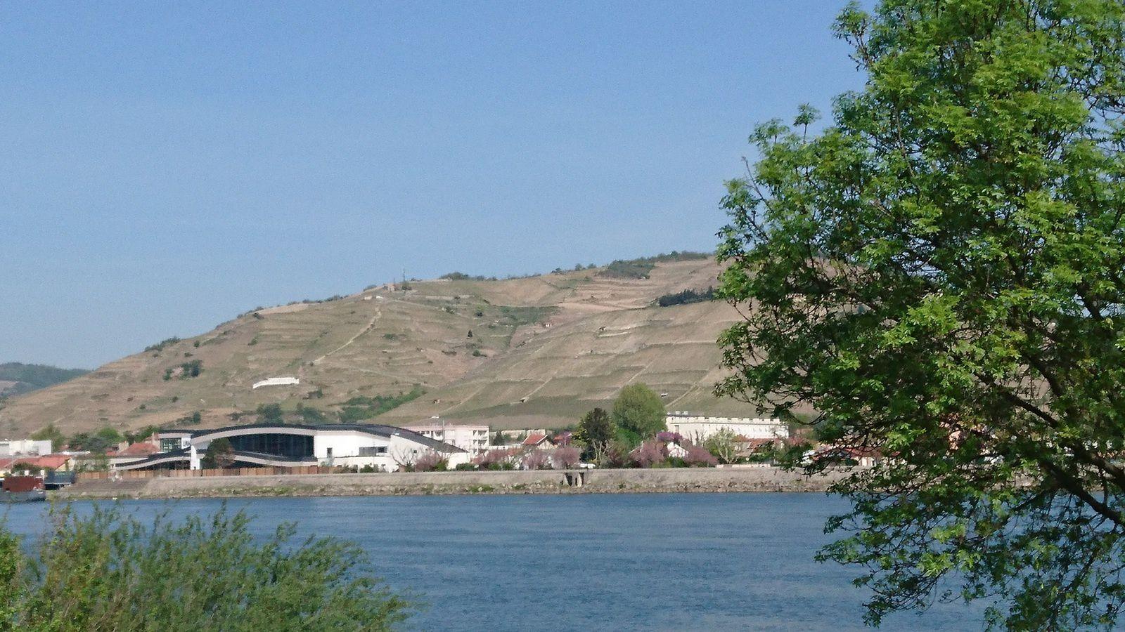 Arrivée à Tournon . Tain l'Hermitage, sur l'autre rive.