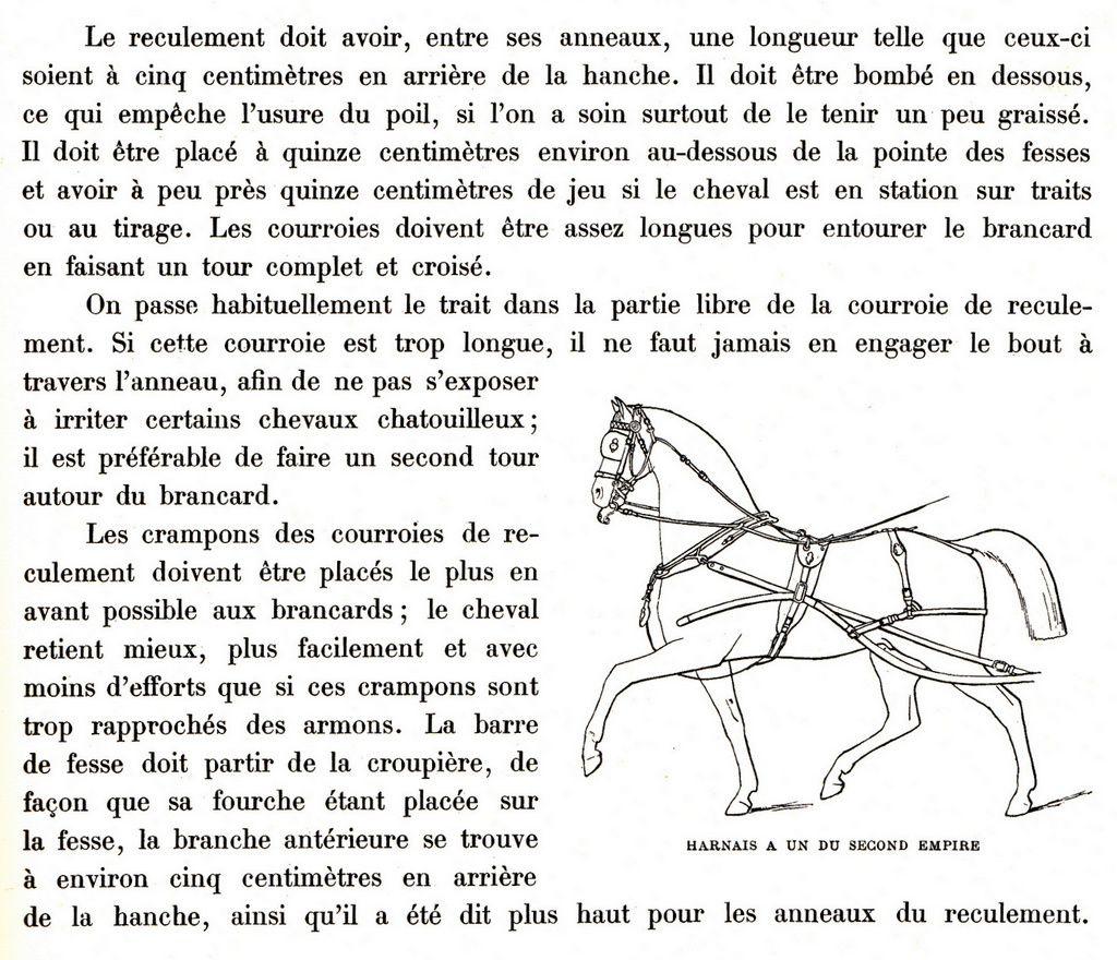 Harnais à un cheval  pour voiture à quatre roues