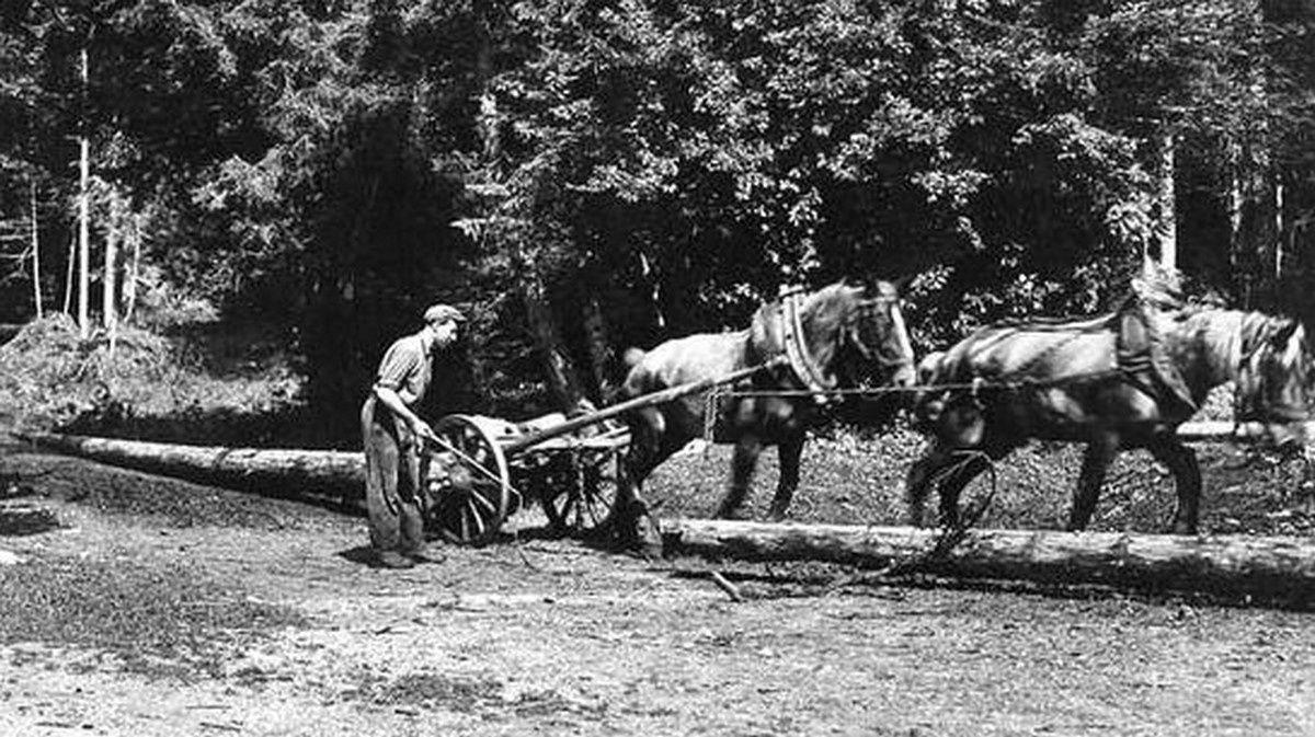 Trinqueballe et logging wheels