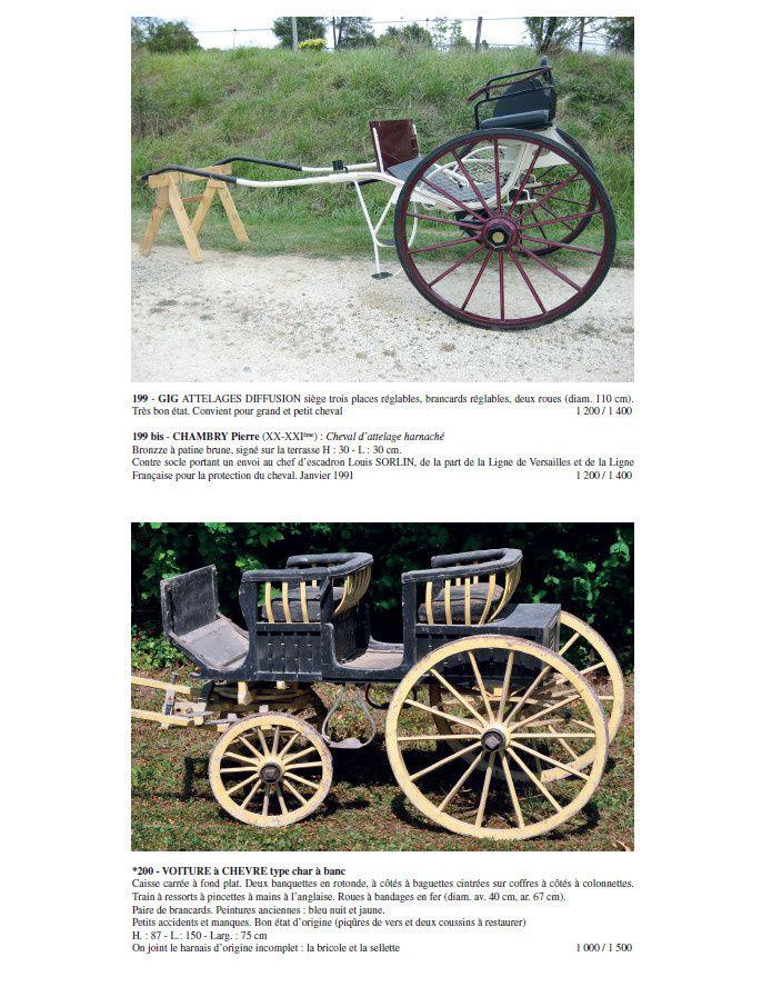 Catalogue vente du 17 Octobre au Haras de Pau Gelos