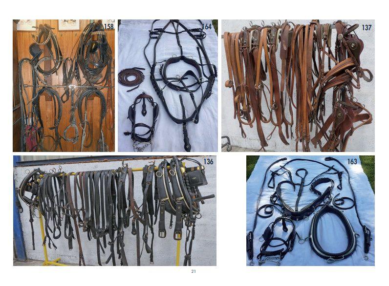 Ctalogue ventes aux enchères au haras du Pin 27/08/ 2016