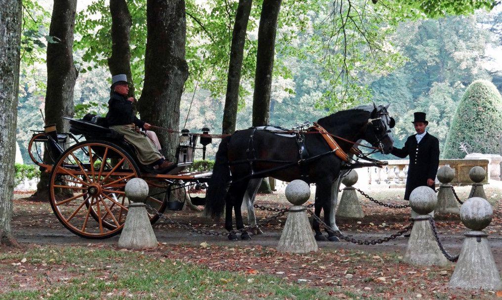 Equipage Goldoni (I) – Andalous – carrick à pompe