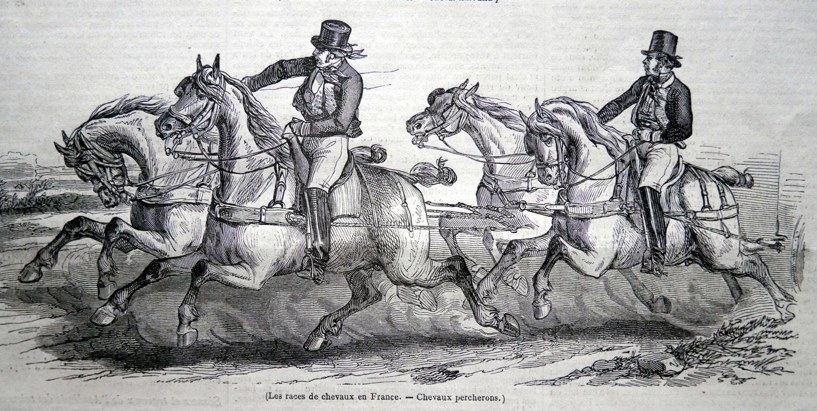 De l'utilisation des races de chevaux en 1846
