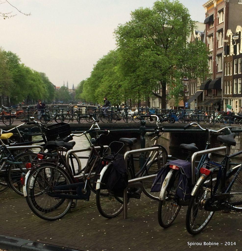 Partout des vélos, ...