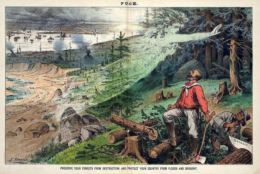 La déforestation et ses effets : en 1884, déjà !