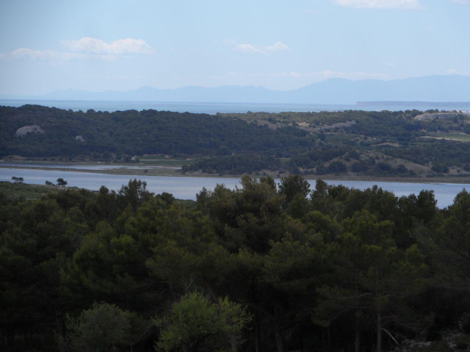 Nous partons rouler dans le massif de la Clape depuis Narbonne plage.