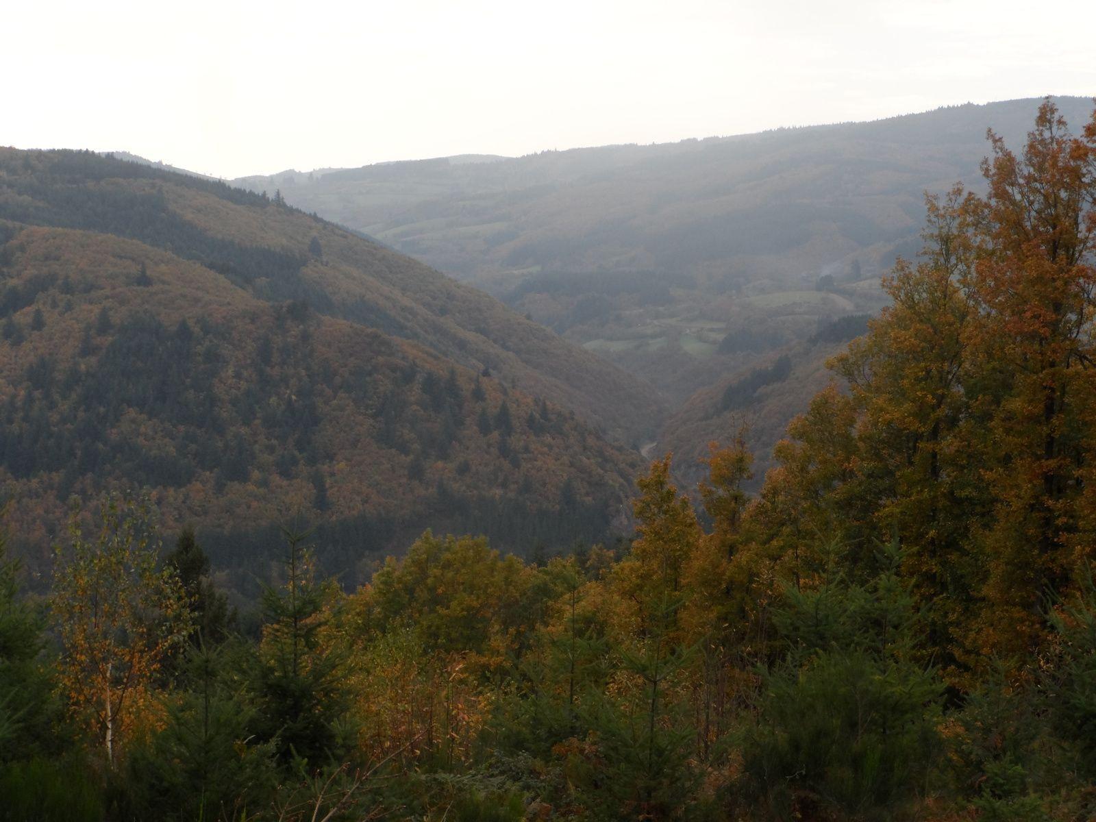 Enfin on entre dans les bois, nous avons parfois des points de vue sur les paysages Roannais. Le ciel est couvert, nous aurons même quelques gouttes !