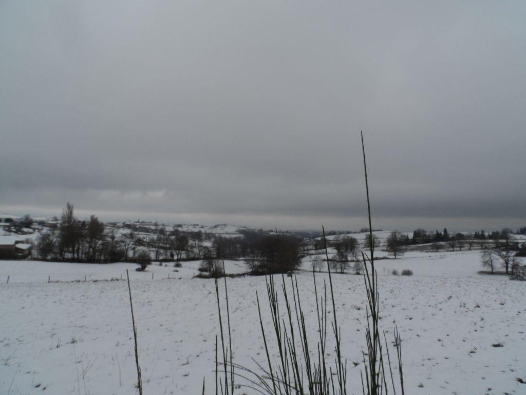 Le temps est désespérément gris et froid. Au départ de Veauche je vois Didier aussi qui part faire un tour de route, ils sont fous ces cyclos !