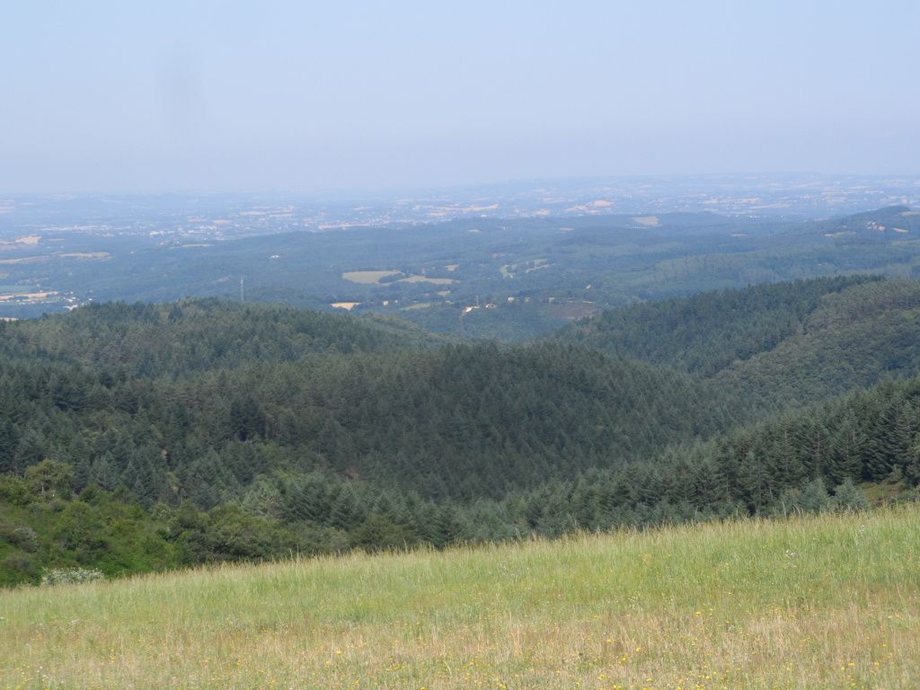 Quand on sort des bois voilà ce qu'on peut voir, des collines  et des vallées noyées dans une brume de chaleur.
