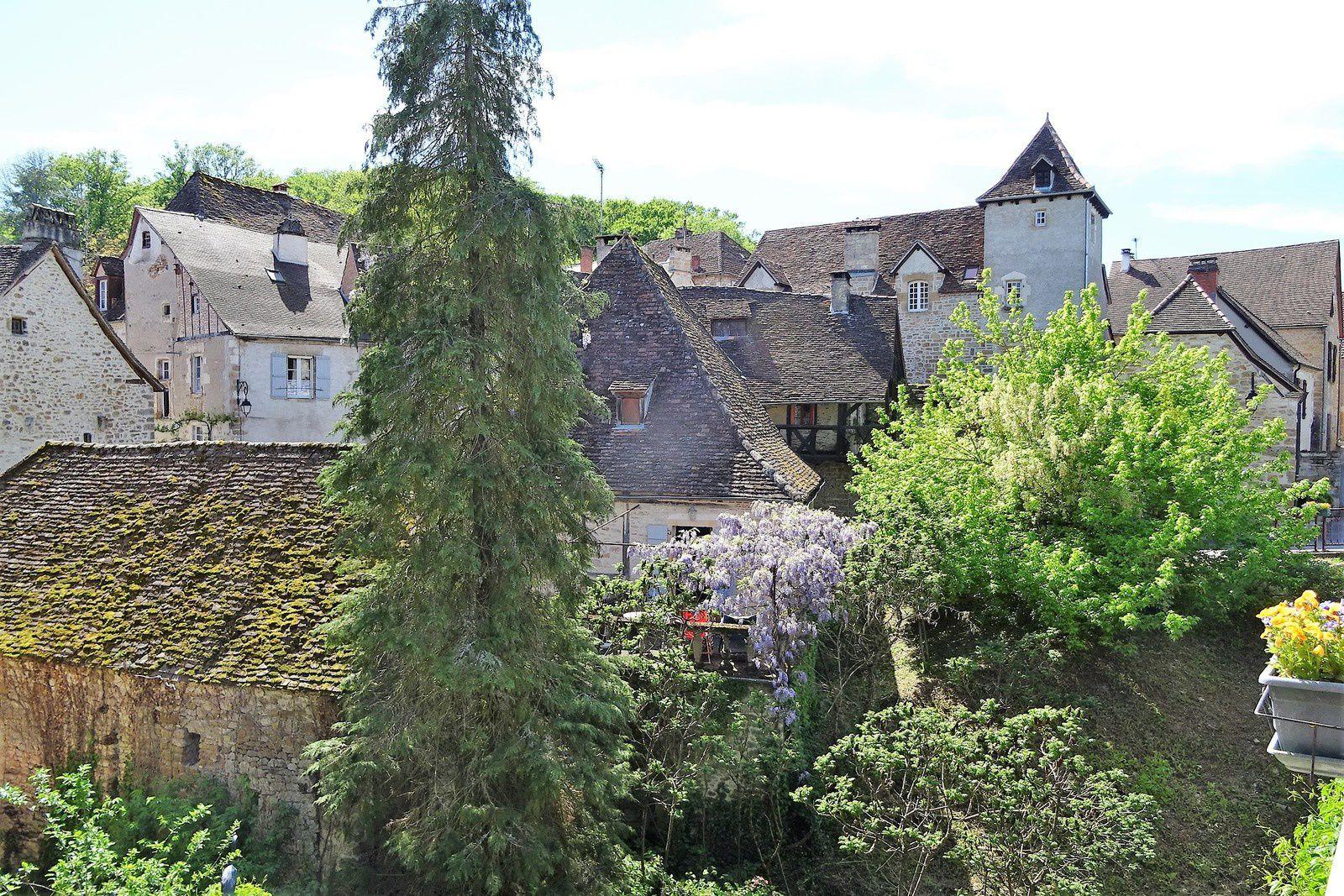 Le village et ses glycines.