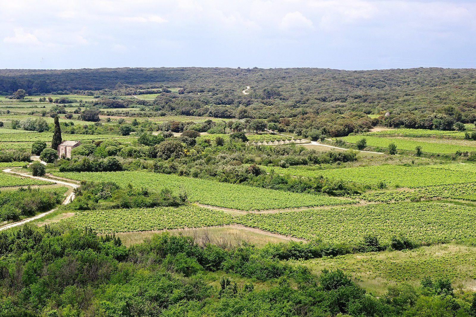 La campagne environnante.
