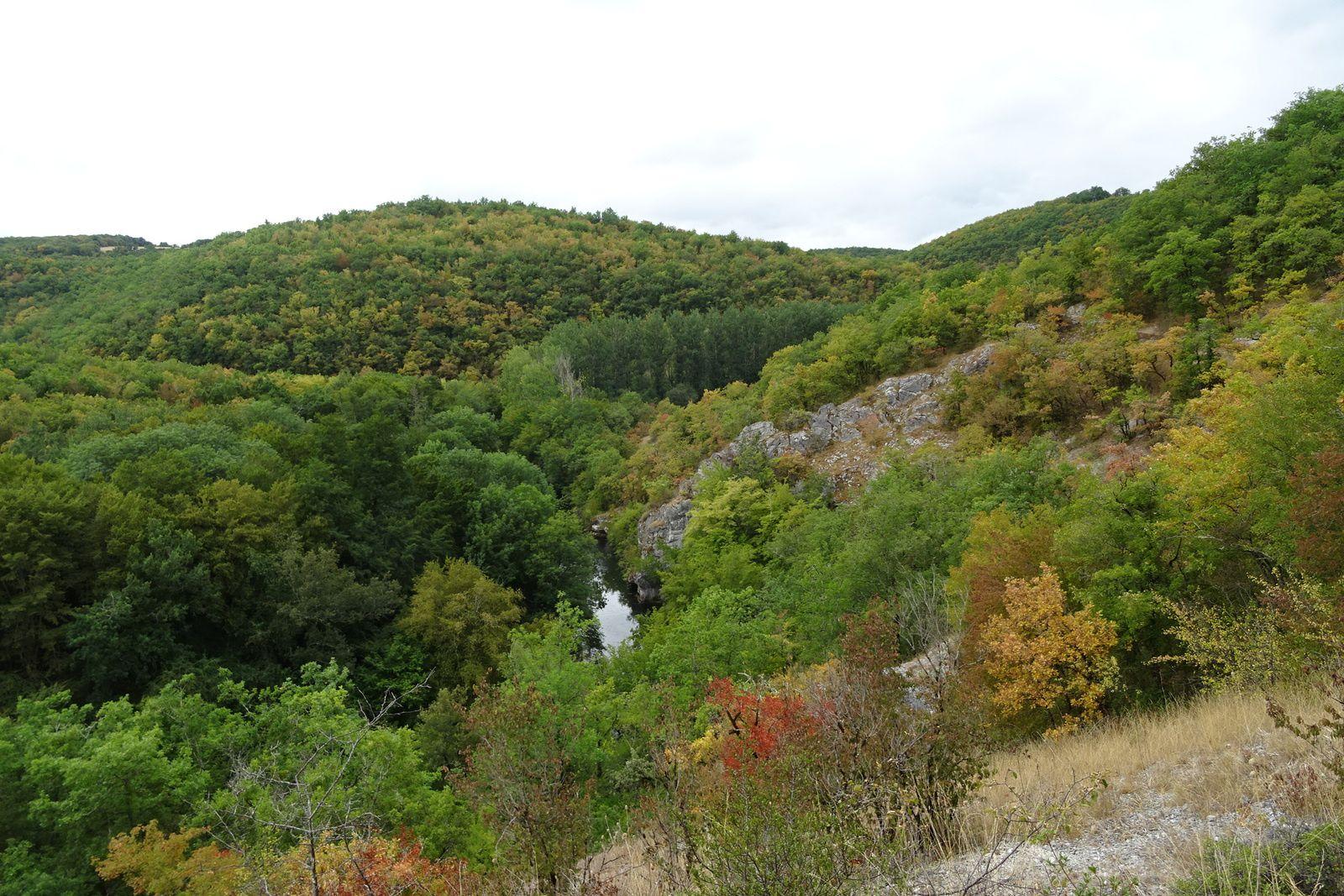 Dans les massifs, l'automne s'installe doucement.