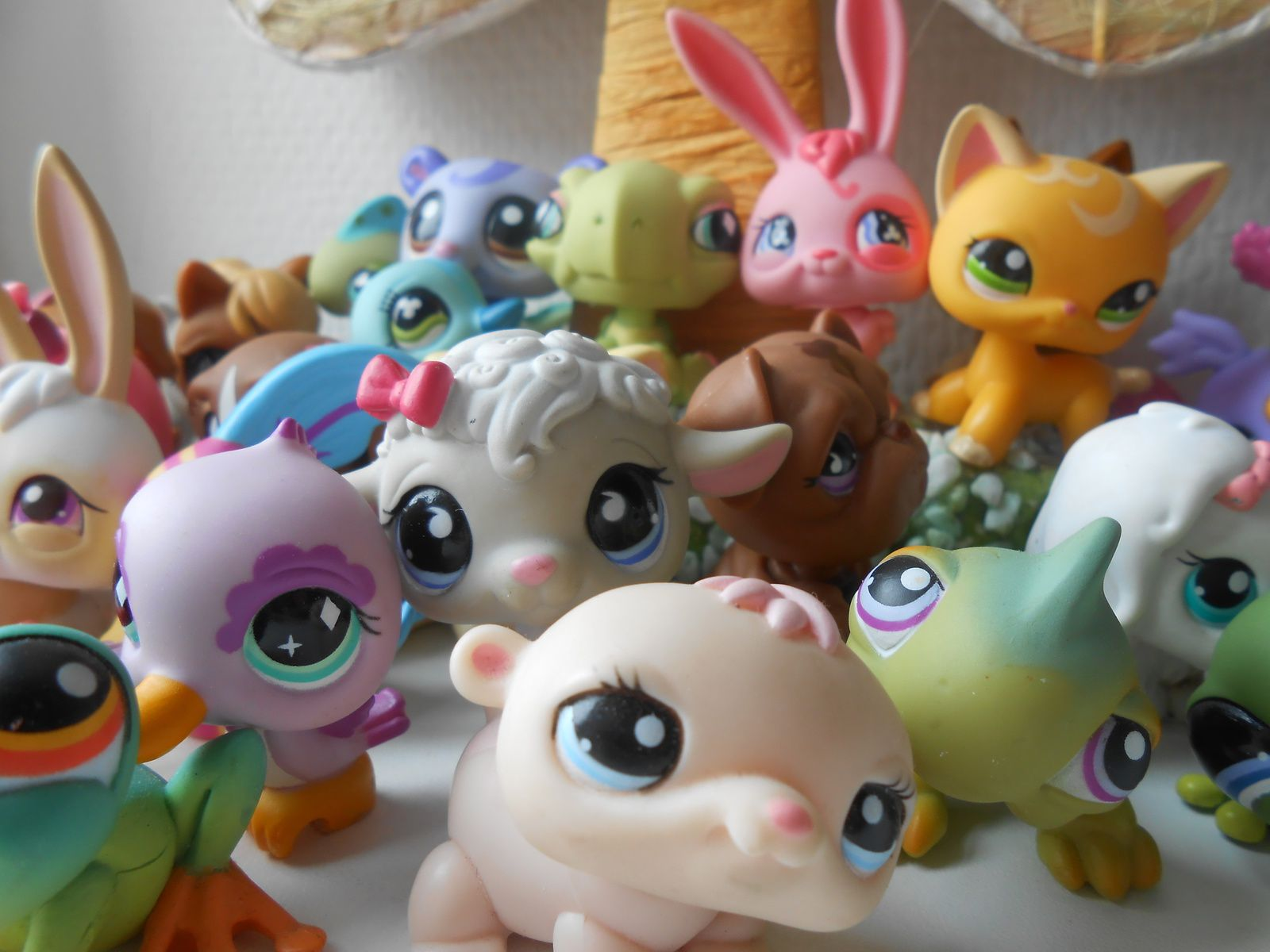 Ma collection de PetShops♥