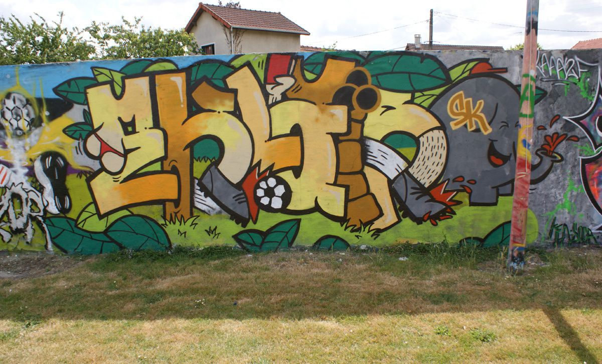 Street Art : Graffitis &amp&#x3B; Fresques Murales 77108 Chelles