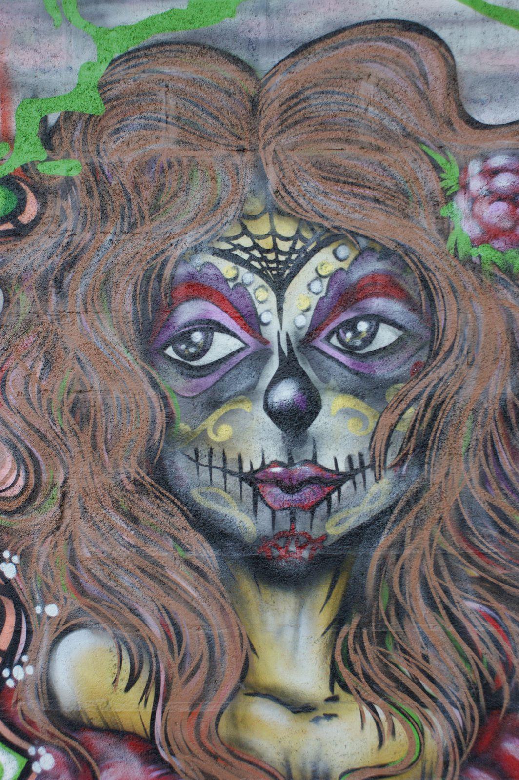 Street Art : Graffitis & Fresques Murales Département Yvelines (78)