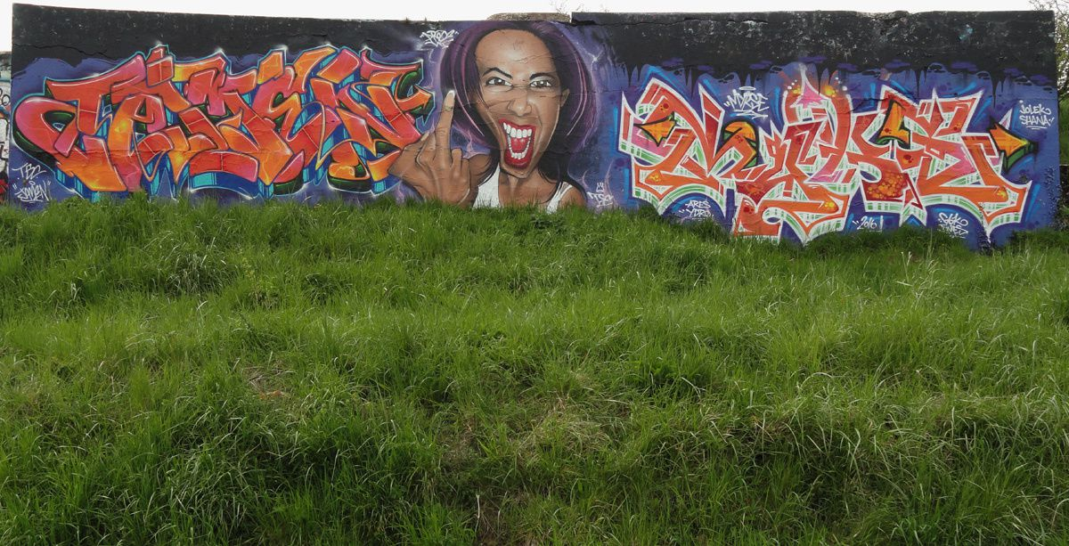 Street Art : Graffitis &amp&#x3B; Fresques Murales 76351 Le Havre