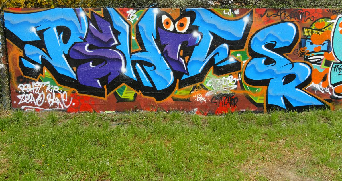 Street Art : Graffitis &amp&#x3B; Fresques Murales 93051 Noisy le grand