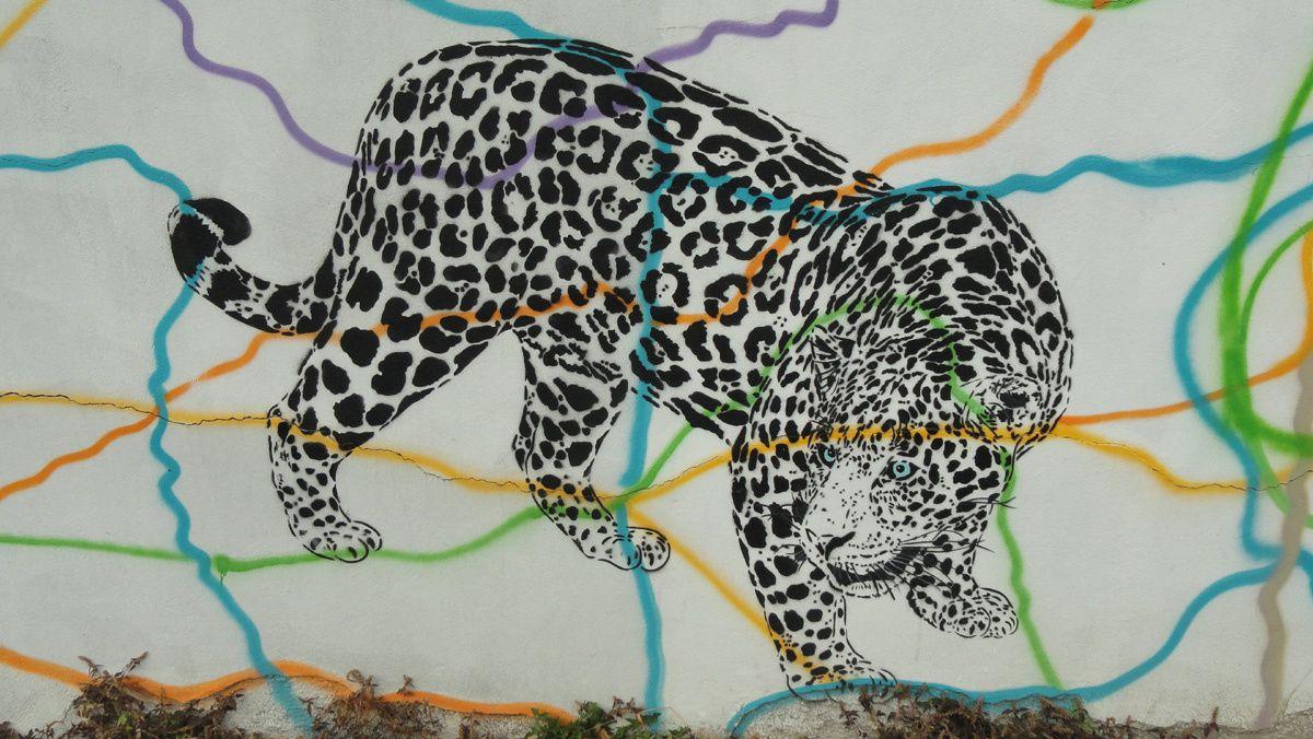 Street Art : Graffitis &amp&#x3B; Fresques Murales 93038 Montreuil