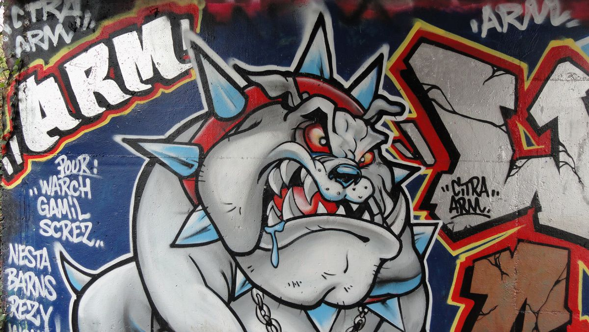 Street Art : Graffitis &amp&#x3B; Fresques Murales 91600 Soisy sur seine