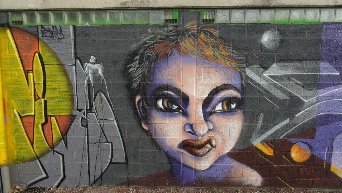 Street Art : Graffitis &amp&#x3B; Fresques Murales 6220 Fleurus (Belgique)