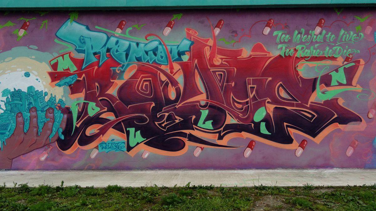 Street Art : Graffitis &amp&#x3B; Fresques Murales 54528 Toul