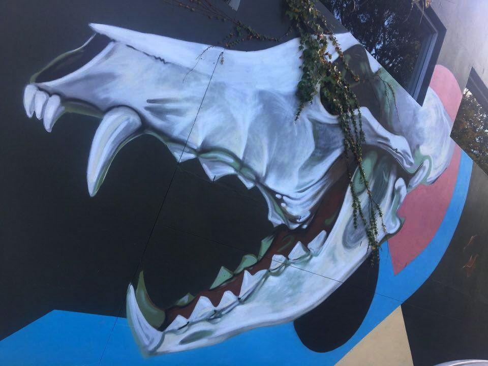 Street Art : Graffitis &amp&#x3B; Fresques Murales Sydney (Australie)