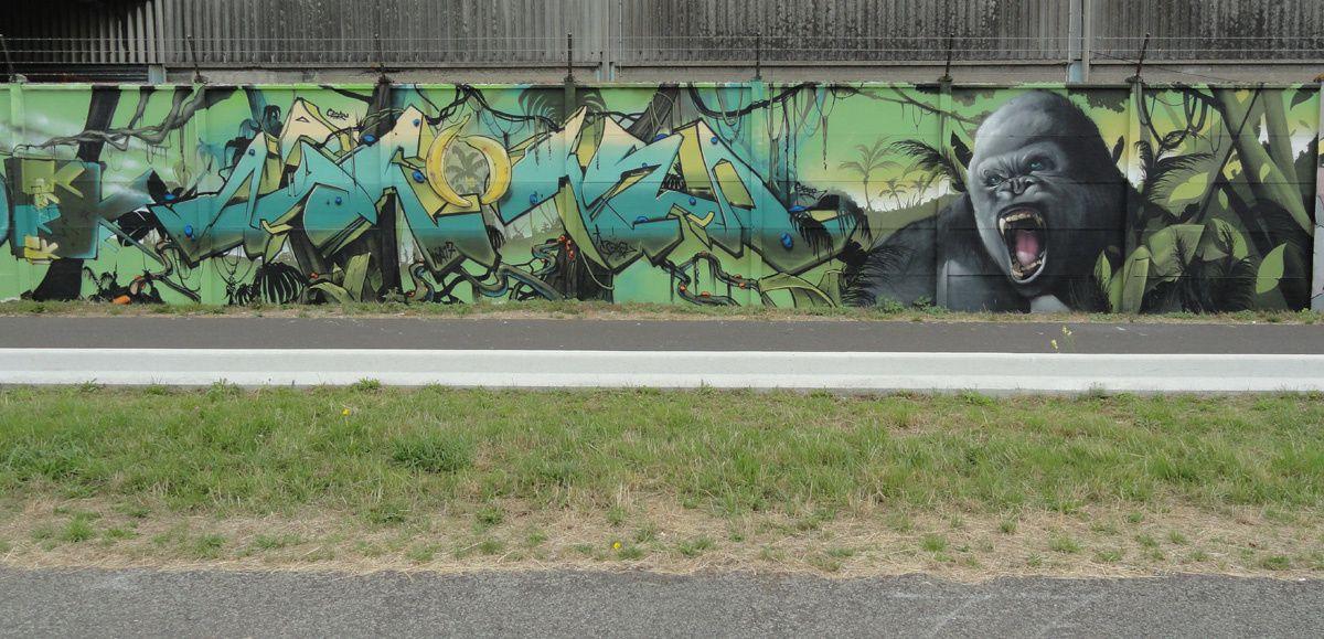 Street Art : Graffitis &amp&#x3B; Fresques Murales 76103 Bonsecours