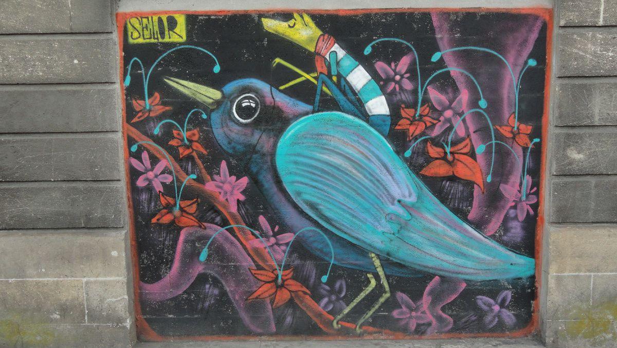 Album - Graffitis Bordeaux Tom 009