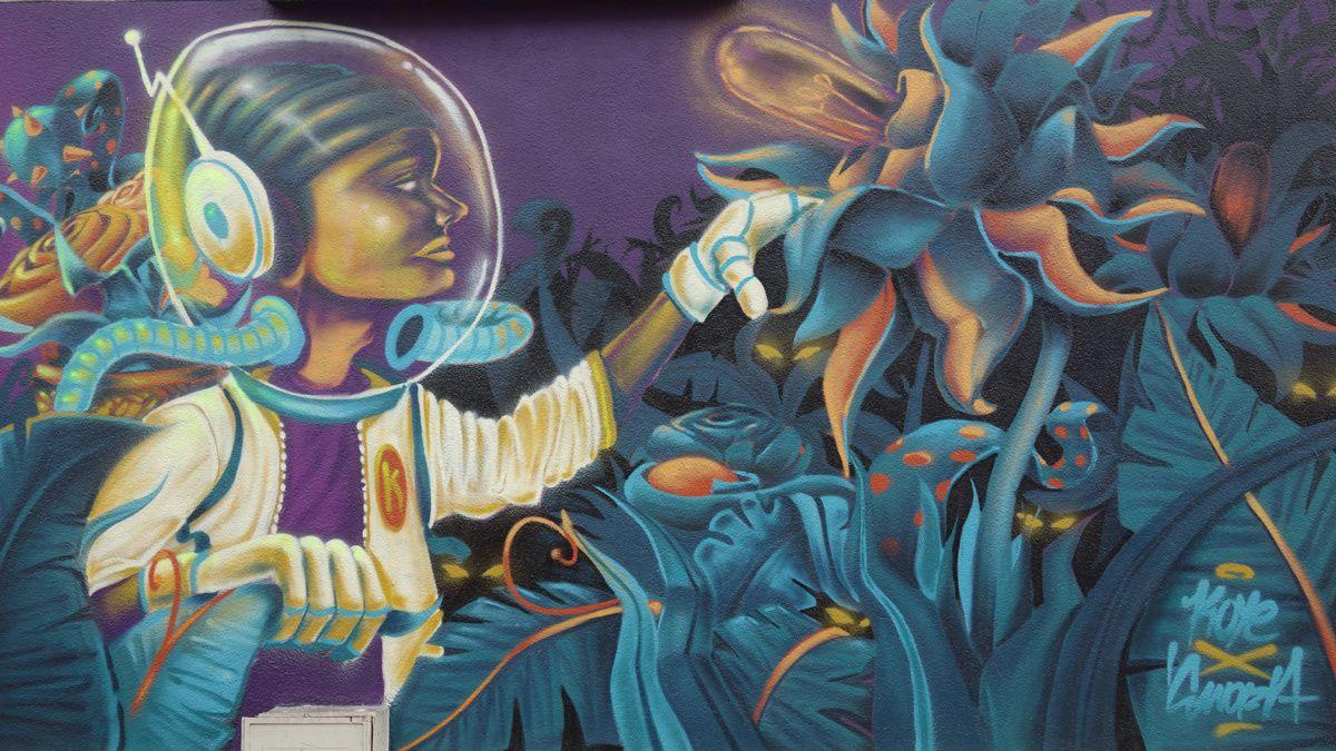 Street Art : Graffitis &amp&#x3B; Fresques Murales 45234 Orleans