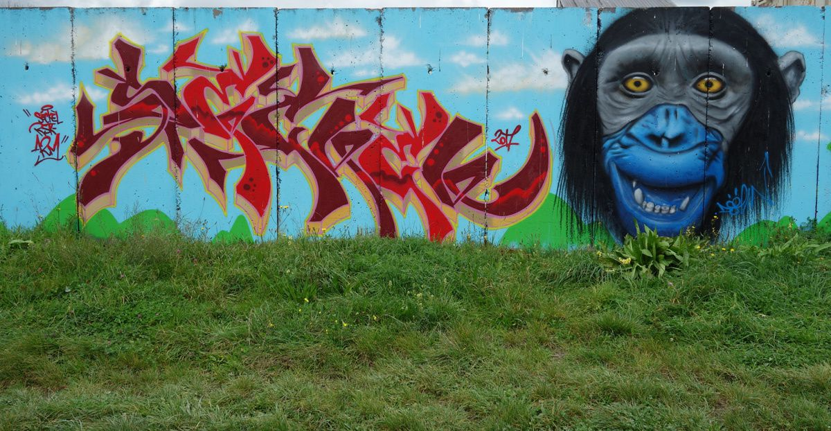 Street Art : Graffitis &amp&#x3B; Fresques Murales 51454 Reims