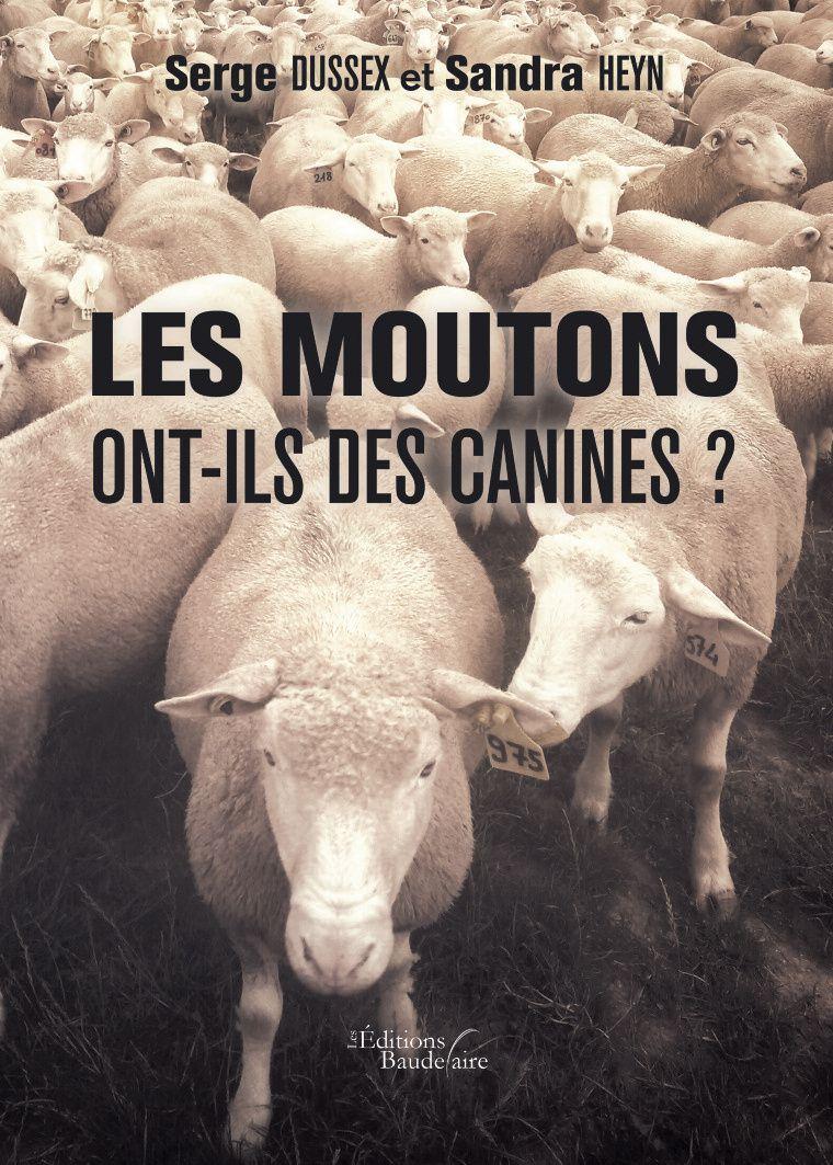 Les moutons ont-ils des canines ?