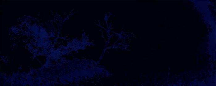 ... Au jardin qui s'étonne en de sombres clartés, solitaire, mon pas claque en la pierre roide ...