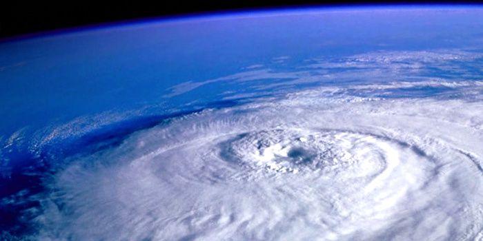 ... Et notre œil sous le ciel, immense et vaste baie qui contemple nos fronts comme un grain à germer ...