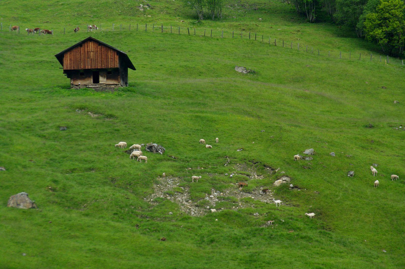 quelques cabanes de montagne