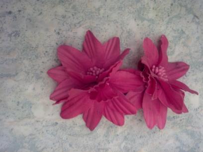 2 fleur de chez hema