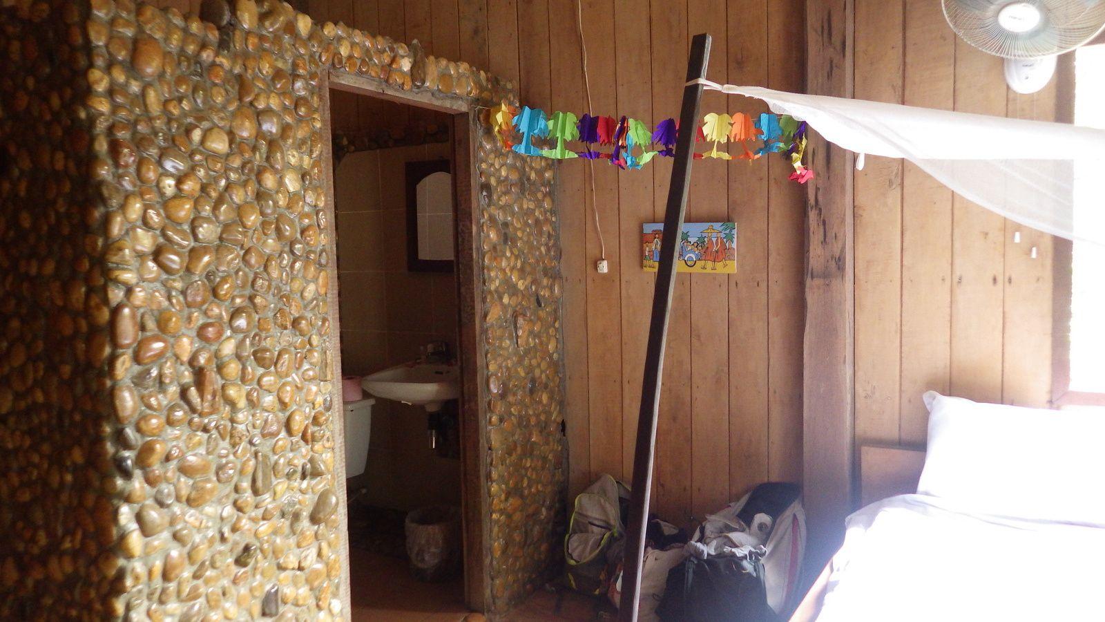 Jeune rubber tree, ma chambre a le Tree Top eco Lodge (7$ LA NUIT)   et le restaurant
