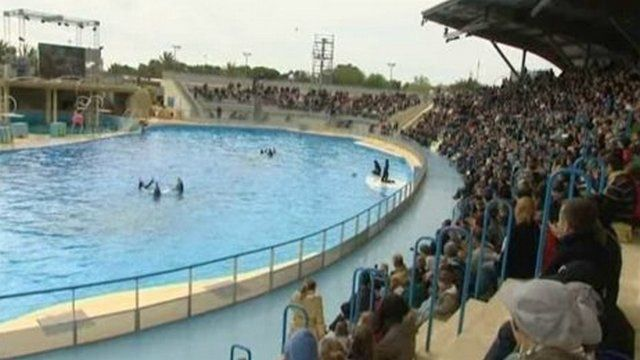 Dans cette lette datée du 6 juillet, jour où les membres de sa Fondation ont manifesté au parc Astérix (Oise) pour dénoncer la captivité des dauphins, l'ancienne actrice interpelle la ministre.