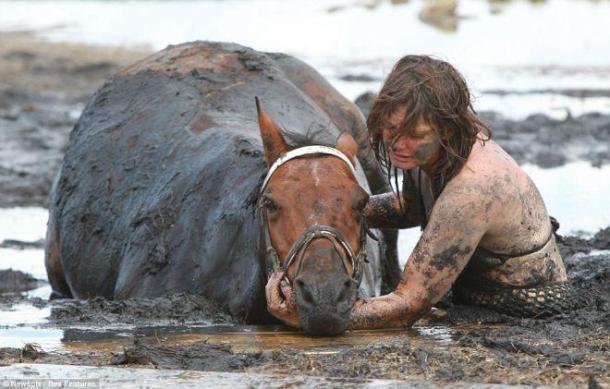 Elle voyait son cheval se noyer sous ses yeux. Ce qu'elle a fait pour le sauver est tout simplement merveilleux