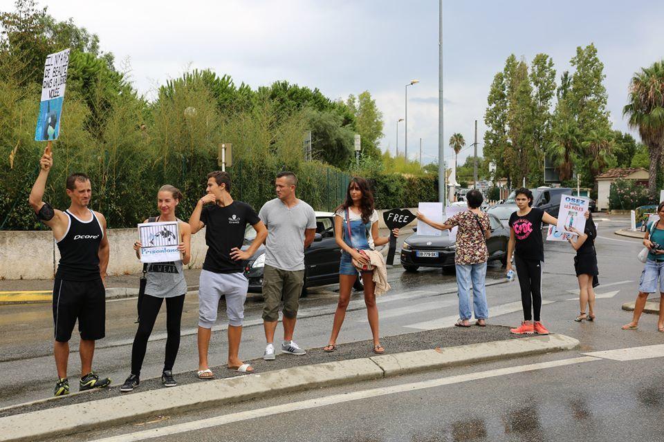 Marineland d'Antibes : 500 opposants à la captivité face au parc