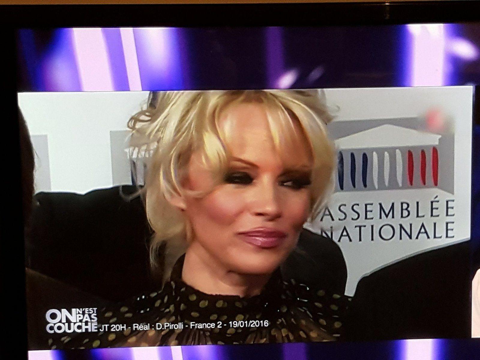 """Paul Watson et Pamela Anderson sur France 2 dans l'émission """"On n'est pas couché""""..."""